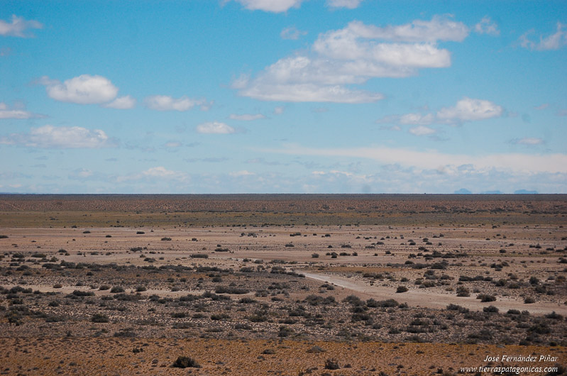Patagonian steppe, Route 40